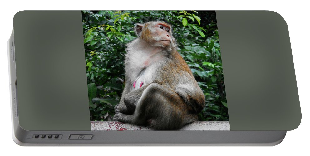 Cambodia Portable Battery Charger featuring the photograph Cambodia Monkeys 2 by Ron Kandt