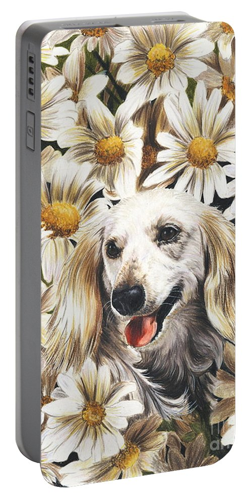 Dachshund Portable Battery Charger featuring the drawing Camoflaged by Barbara Keith