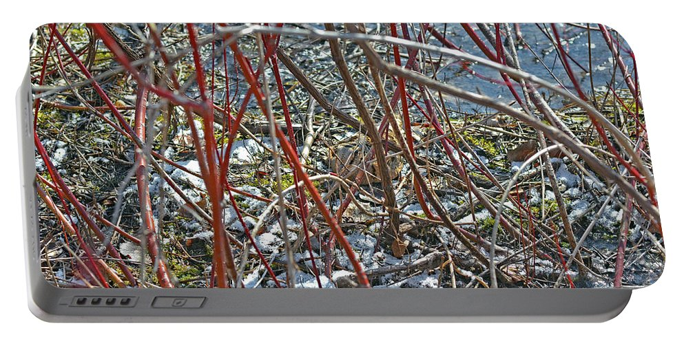 American Woodcock Portable Battery Charger featuring the photograph Camouflaged Look by Asbed Iskedjian