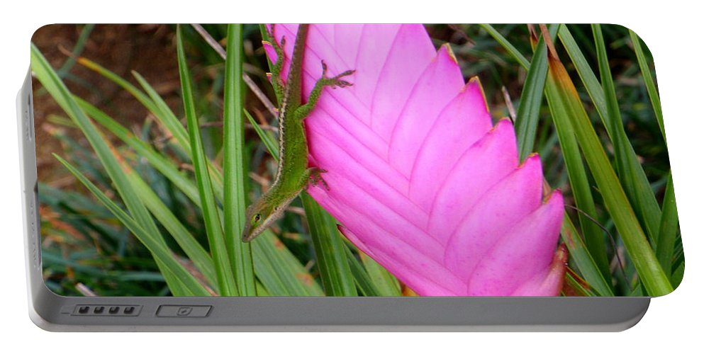Gecko Portable Battery Charger featuring the photograph Can You See Me Now by Mary Deal
