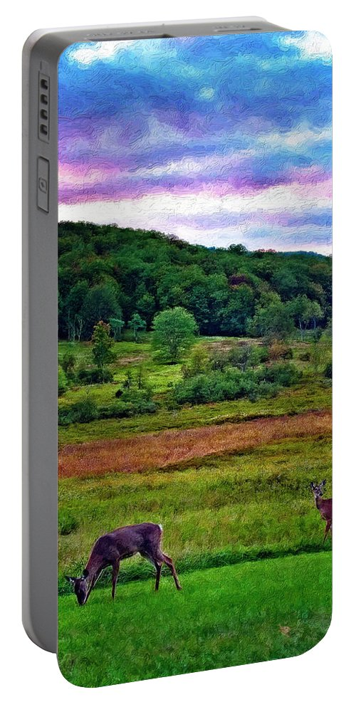 West Virginia Portable Battery Charger featuring the photograph Canaan Valley Evening Impasto by Steve Harrington