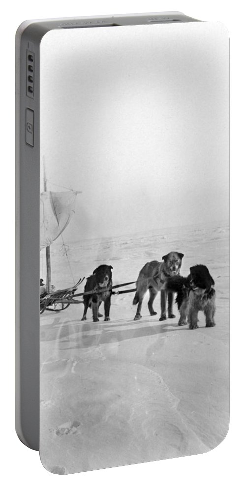 20th Century Portable Battery Charger featuring the photograph Canada: Dogsledding by Granger