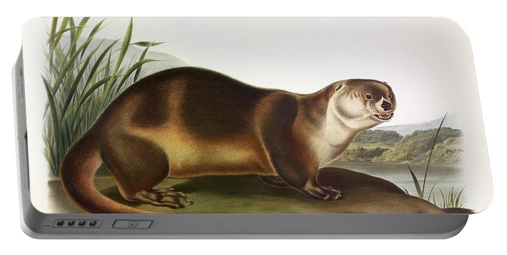 Canada Otter Portable Battery Charger featuring the painting Canada Otter by John James Audubon