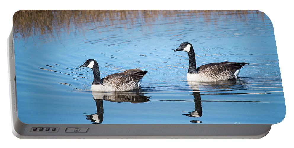 Canadian Portable Battery Charger featuring the photograph Canadian Geese Couple by Dianne Phelps