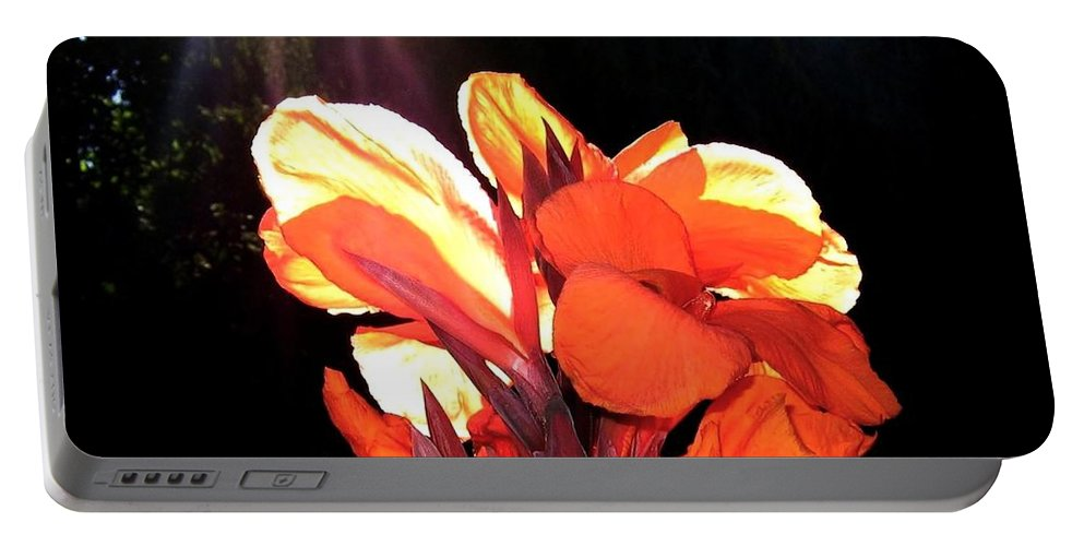 Canna Lily Portable Battery Charger featuring the photograph Canna Lily by Will Borden