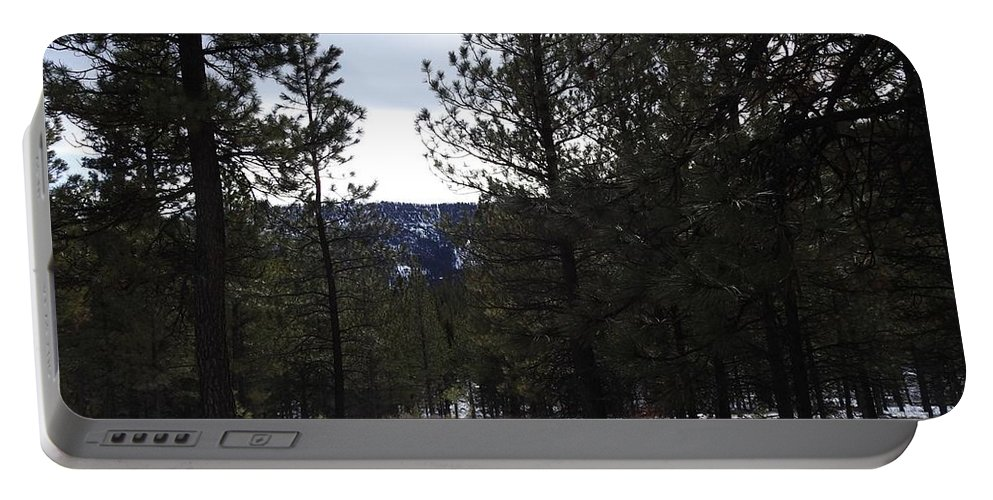 Portable Battery Charger featuring the photograph Canyon Mischief by Dan Hassett