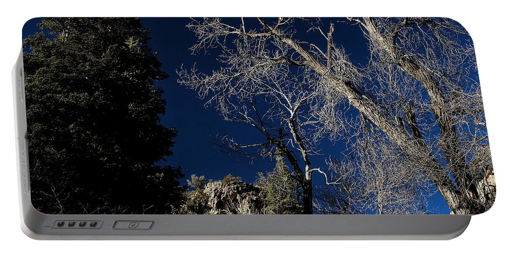 Tree Portable Battery Charger featuring the photograph Canyon Tree by Buck Buchanan