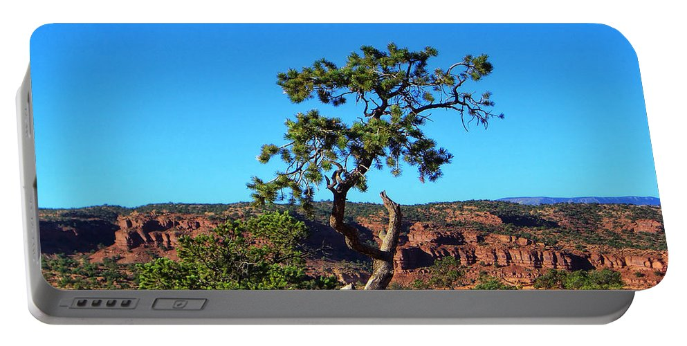 Utah Portable Battery Charger featuring the photograph Capitol Reef 6 by Ingrid Smith-Johnsen