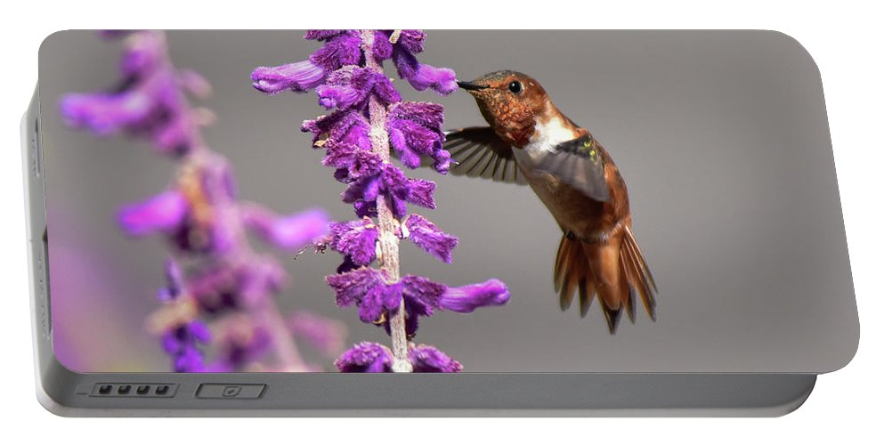 Linda Brody Portable Battery Charger featuring the photograph Captivated II by Linda Brody