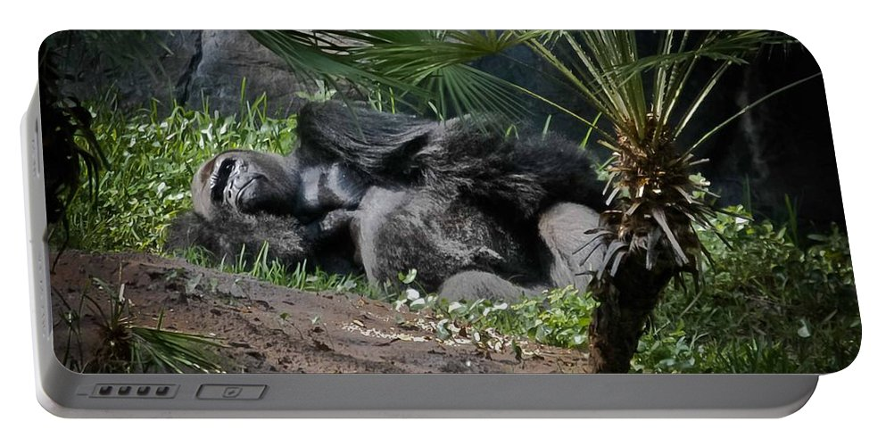 Gorilla Portable Battery Charger featuring the digital art Captivity Is Heartbreaking by DigiArt Diaries by Vicky B Fuller