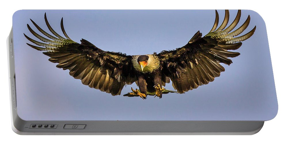 Animal Portable Battery Charger featuring the photograph Caracara Landing by Jerry Fornarotto