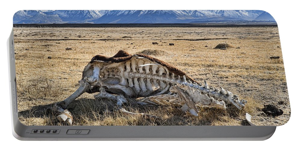 Nature Portable Battery Charger featuring the photograph Carcass With A View by Kelley King