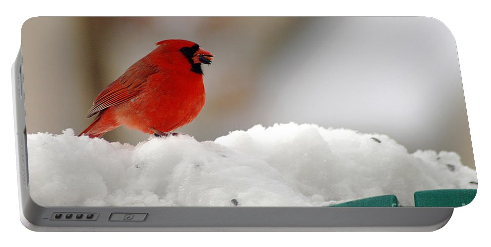 Clay Portable Battery Charger featuring the photograph Cardinal In Snow by Clayton Bruster
