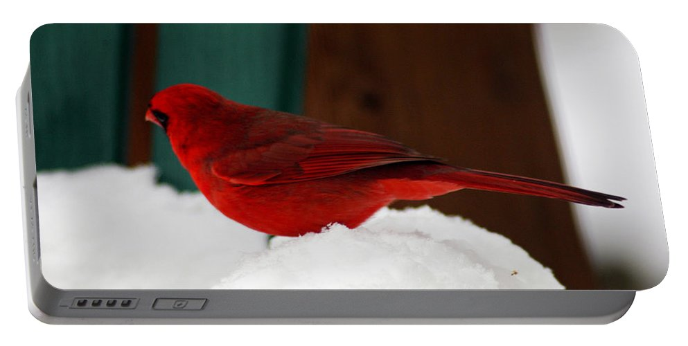 Clay Portable Battery Charger featuring the photograph Cardinal In Snow II by Clayton Bruster