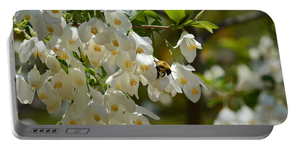 Carolina Silverbell And Bee Portable Battery Charger featuring the photograph Carolina Silverbell And Bee by Maria Urso