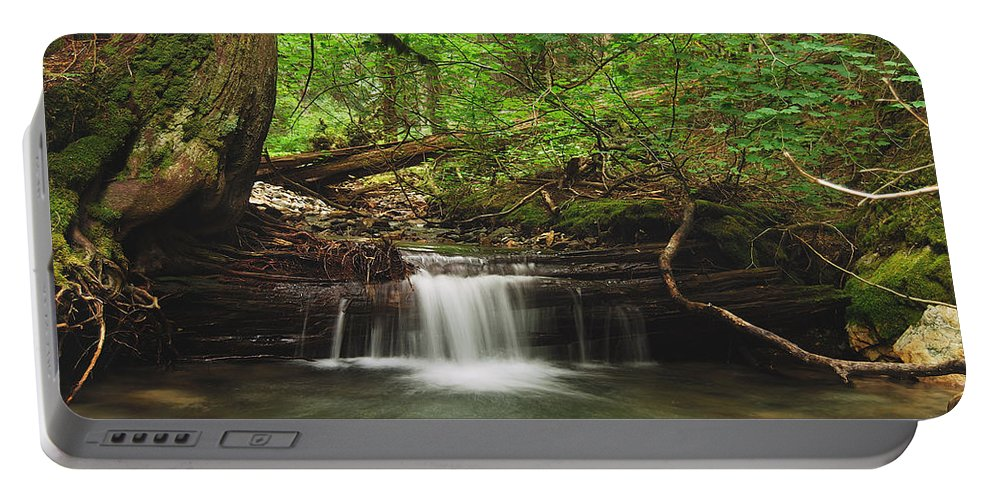 Landscape Portable Battery Charger featuring the photograph Cascade Happy Trail by Michael Peychich