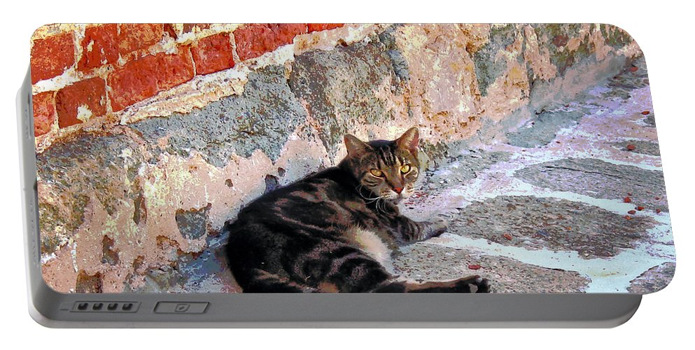 Cats Portable Battery Charger featuring the photograph Cat Against Stone by Susan Savad
