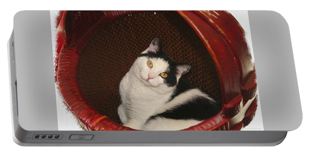 Cat Portable Battery Charger featuring the photograph Cat In A Basket by Margie Wildblood