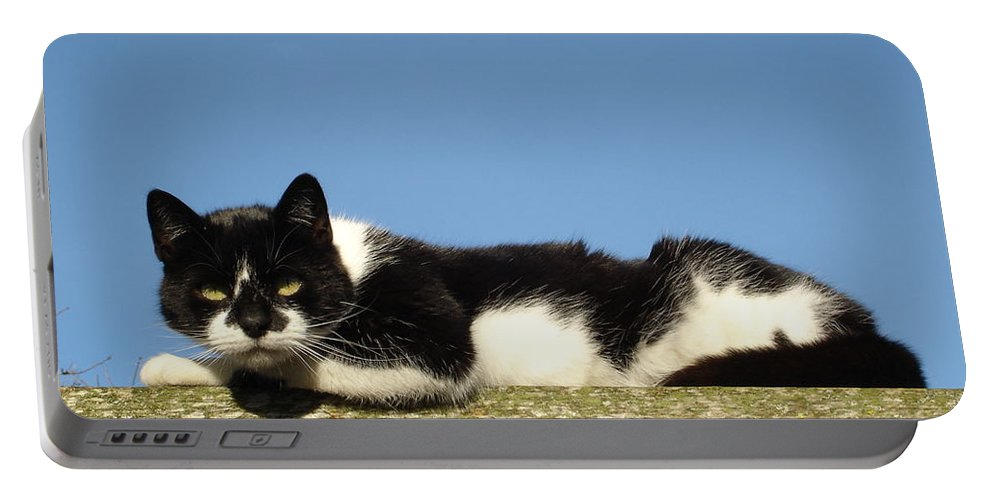 Cat Portable Battery Charger featuring the photograph Cat On The Roof by Susan Baker