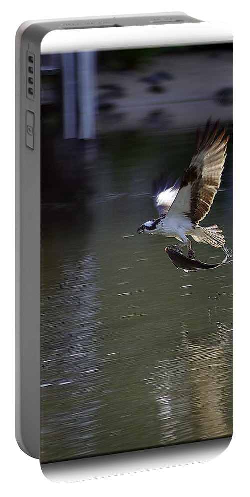 2d Portable Battery Charger featuring the photograph Catch Of The Day by Brian Wallace