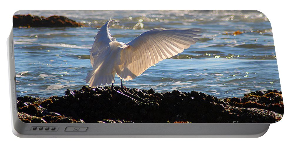 Clay Portable Battery Charger featuring the photograph Catching Rays At The Beach by Clayton Bruster