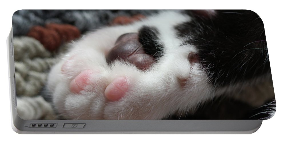 Cat Portable Battery Charger featuring the photograph Cats Paw by Kim Henderson