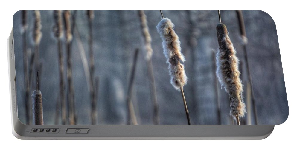 Cattails Portable Battery Charger featuring the photograph Cattails In The Winter by Sumoflam Photography