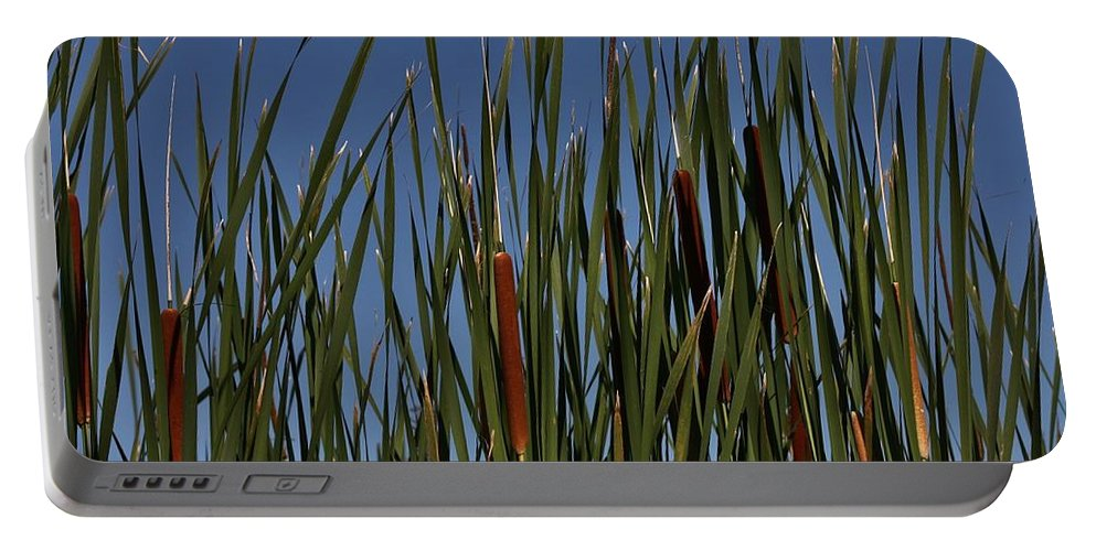 Cattails Portable Battery Charger featuring the photograph Cattails by Kathy Kirkland