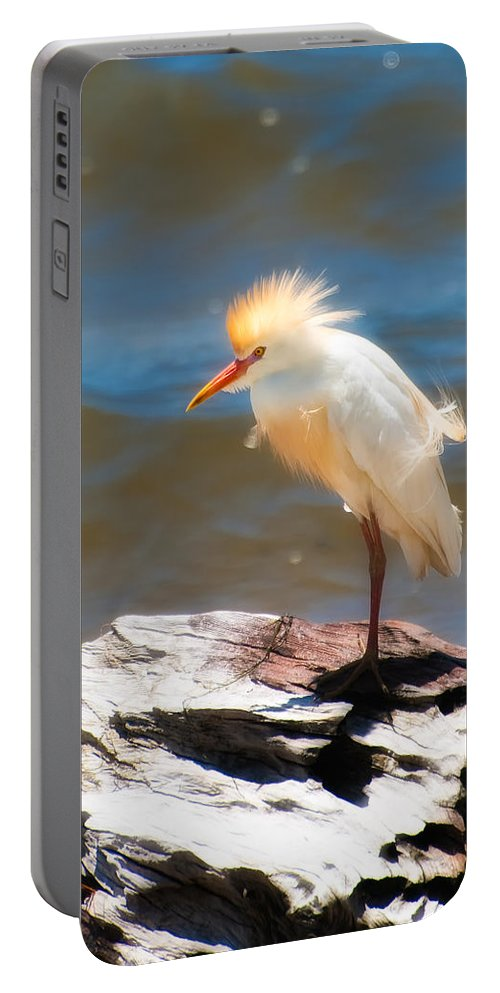 Animal Portable Battery Charger featuring the photograph Cattle Egret In Breeding Plumage by Rich Leighton