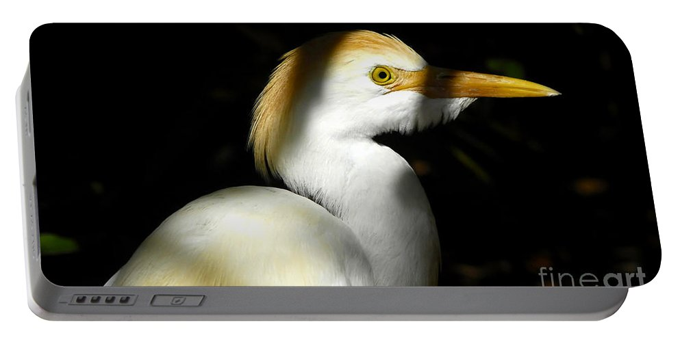 Cattle Egret Portable Battery Charger featuring the photograph Cattle Egret In Shadow by David Lee Thompson