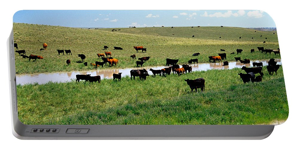 Reclaim Portable Battery Charger featuring the photograph Cattle Graze On Reclaimed Land by Inga Spence