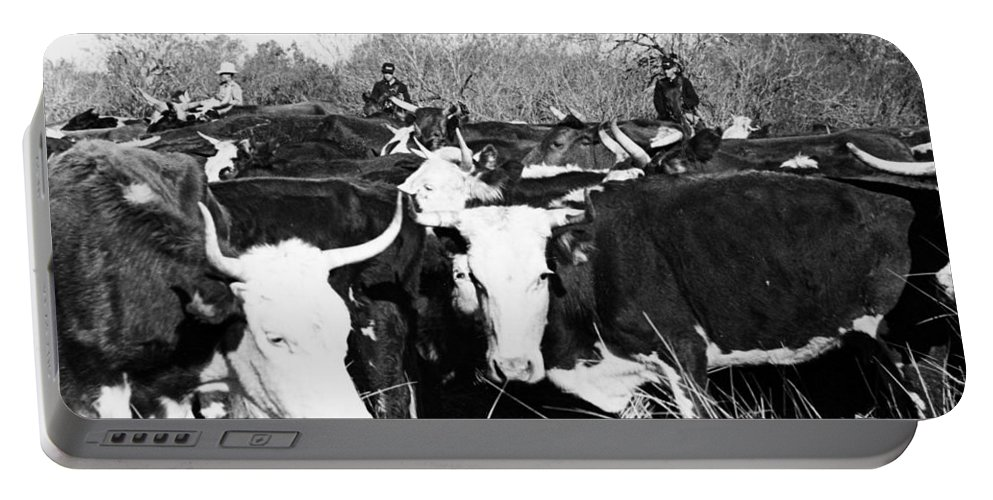 1950 Portable Battery Charger featuring the photograph Cattle: Longhorns by Granger