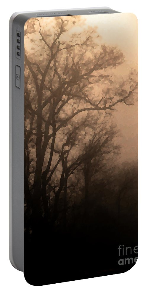 Soft Portable Battery Charger featuring the photograph Caught Between Light And Dark by Amanda Barcon