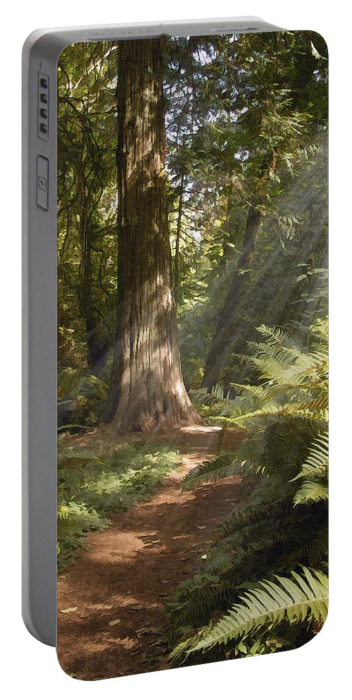 Nature Portable Battery Charger featuring the photograph Cedar Path by Sharon Foster