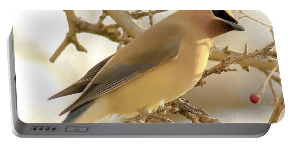 Nature Portable Battery Charger featuring the photograph Cedar Waxwing by Robert Frederick
