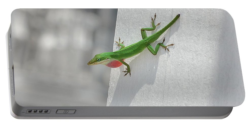 Chameleon Portable Battery Charger featuring the photograph Chameleon by Robert Meanor