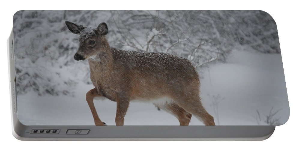 Deer Portable Battery Charger featuring the photograph Charge by Lori Tambakis