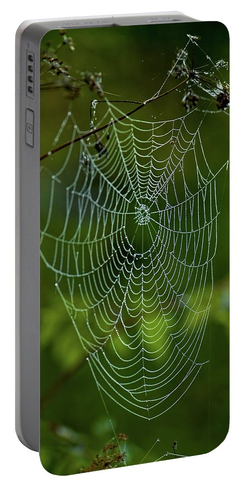 charlotte's Web Portable Battery Charger featuring the photograph Charlotte's Web by Paul Mangold