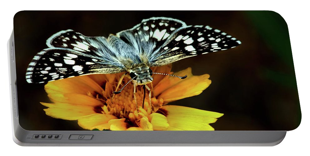 Butterflies Portable Battery Charger featuring the photograph Checkered Skipper Horizontal by Nikolyn McDonald