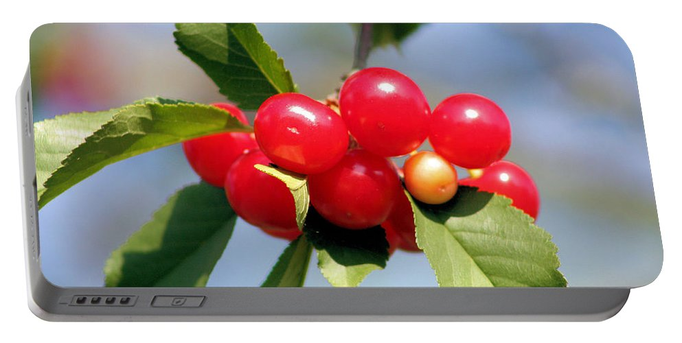 Cherry Portable Battery Charger featuring the photograph Cheery Cherries by Kristin Elmquist