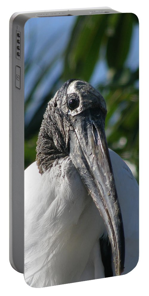Bird Portable Battery Charger featuring the photograph Cheese by Kimberly Mohlenhoff
