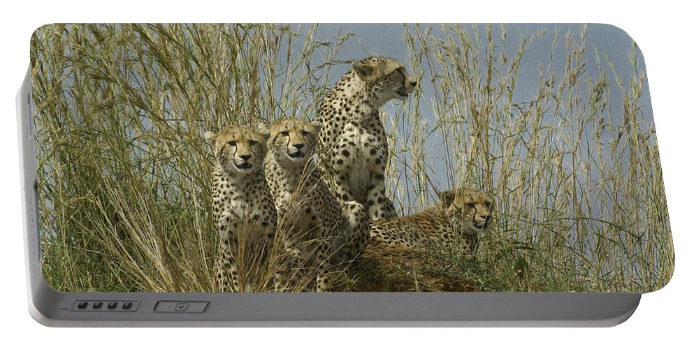 Africa Portable Battery Charger featuring the photograph Cheetah Family by Michele Burgess