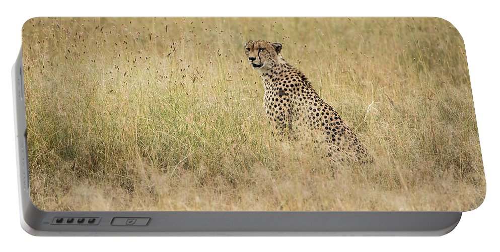 Cheetah Portable Battery Charger featuring the photograph Cheetah In The Savannah by Pravine Chester