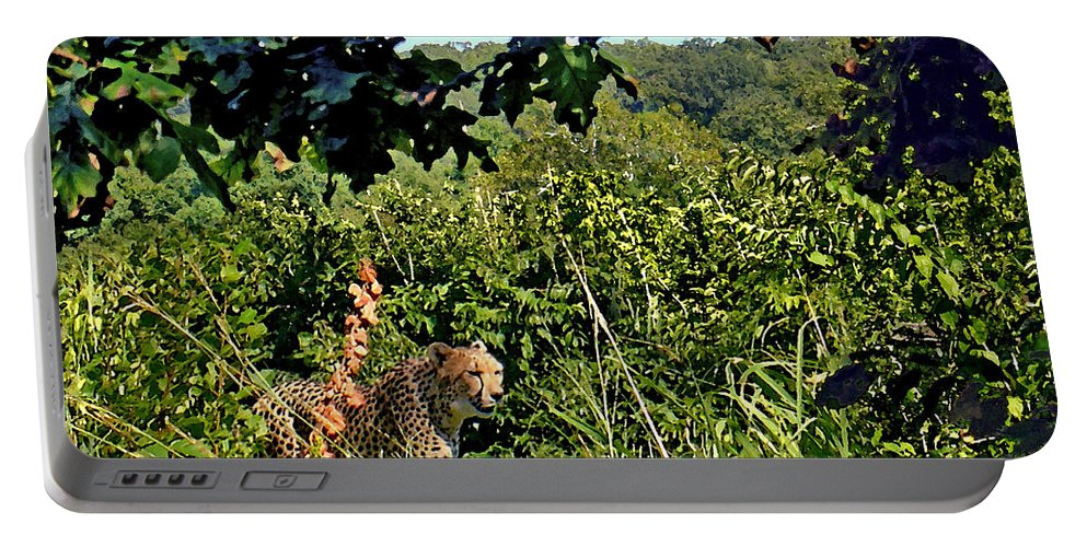 Cheetah Portable Battery Charger featuring the photograph Cheetah Zoo Landscape by Steve Karol
