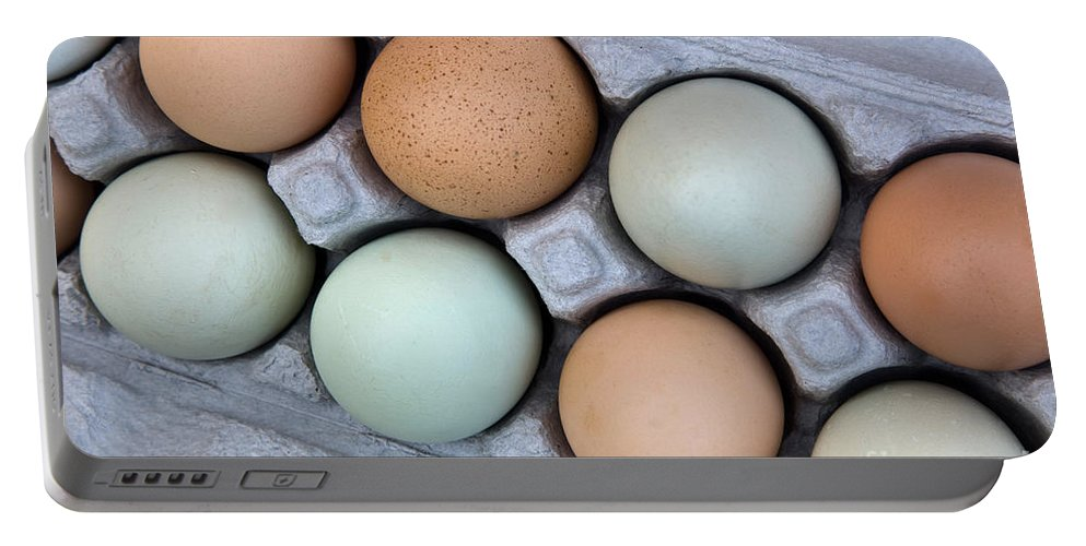 Animal Portable Battery Charger featuring the photograph Chicken Eggs In Carton by Inga Spence