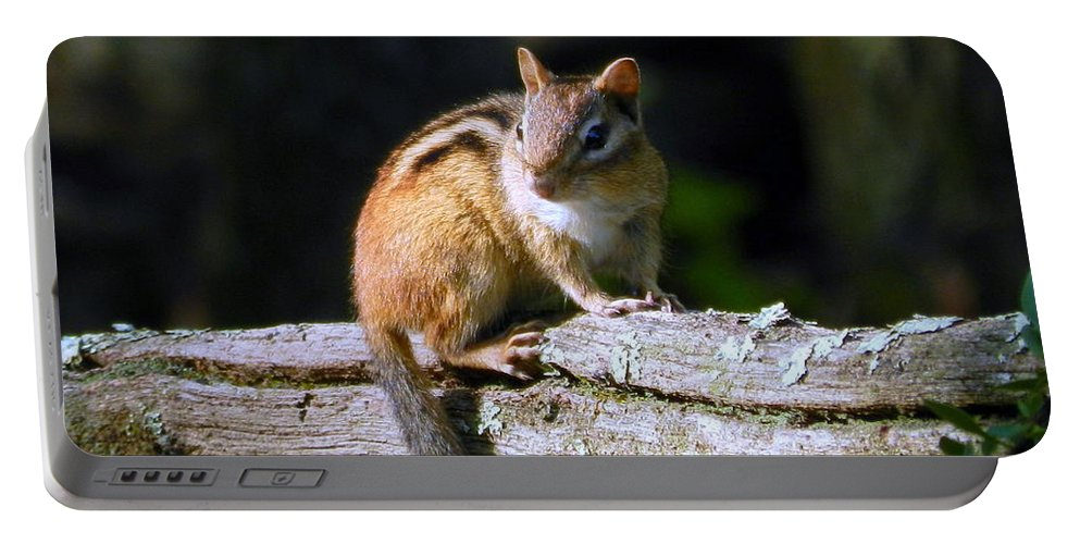 Buck Portable Battery Charger featuring the photograph Chipmunk Portrait by Bruce Brandli