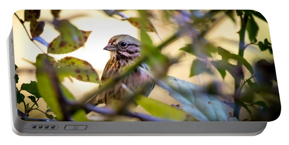 Sparrow Portable Battery Charger featuring the photograph Chipping Sparrow In The Brush by Bob Orsillo
