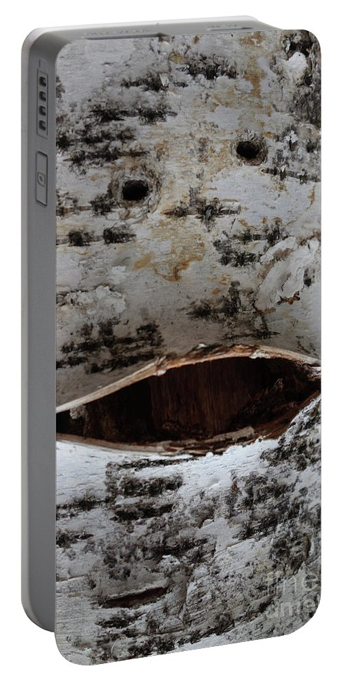 Nature Faces Portable Battery Charger featuring the photograph Chirpy Birch by Jacqueline Athmann