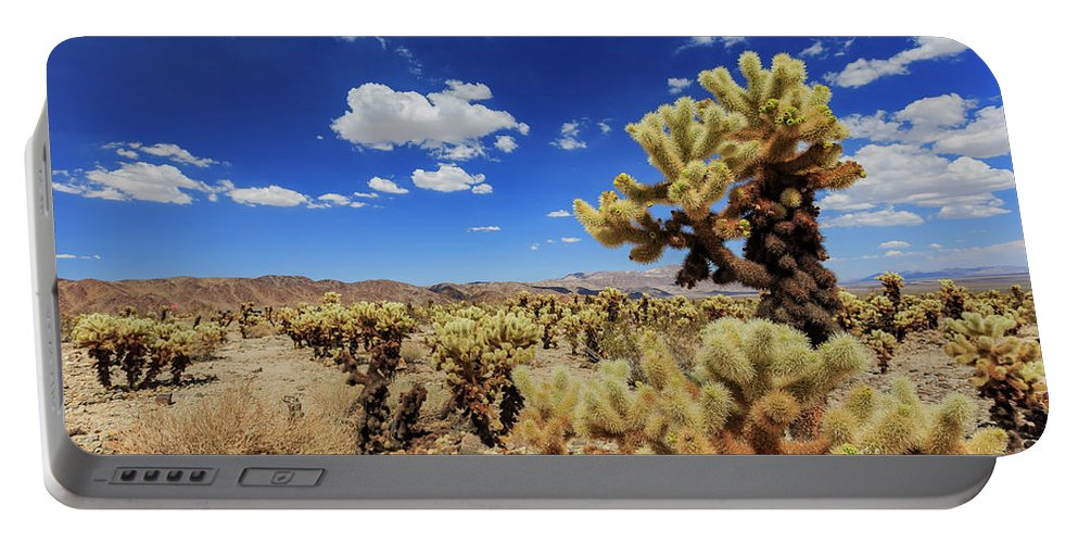 Cholla Cactus Garden Portable Battery Charger featuring the photograph Cholla Cactus Garden In Joshua Tree National Park by Chon Kit Leong