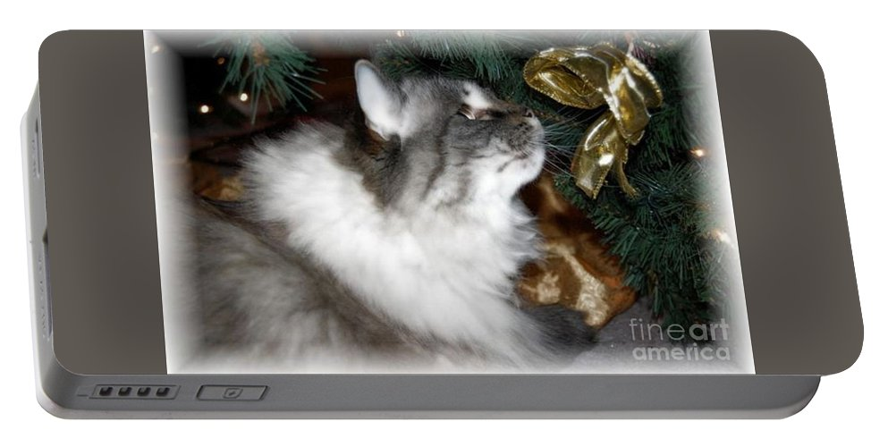 Christmas Portable Battery Charger featuring the photograph Christmas Kitty by Debbi Granruth